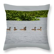 Get Your Ducks In A Row Throw Pillow