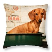 Get Your Hot Dogs Throw Pillow