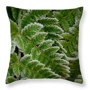 Getting Colder Throw Pillow