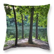 Getting To The Point Throw Pillow