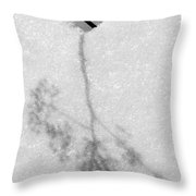 Ghost Of Summer Past Throw Pillow