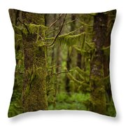 Ghosts Amongst Throw Pillow by Mike Reid