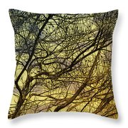 Ghosts Of Crape Myrtles Throw Pillow
