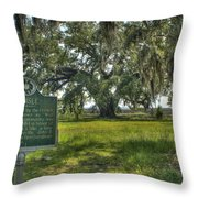 Ghosts Of Delisle  Throw Pillow