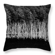 Ghostwood Throw Pillow