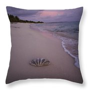 Giant Clam Shell On A Deserted Beach Throw Pillow