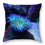 Giant Green Sea Anemone Throw Pillow