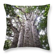 Giant Kauri Grove Throw Pillow