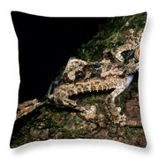Giant Leaf Tail Gecko Throw Pillow
