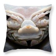 Giant Marine Isopod Throw Pillow