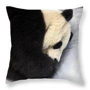 Giant Panda Portrait Throw Pillow