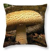 Giant Prince Mushroom Throw Pillow