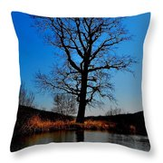'giants Live Here' Throw Pillow