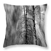 Gibbons Falls In Yellowstone National Park Throw Pillow