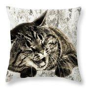 Giggle Kitty  Throw Pillow