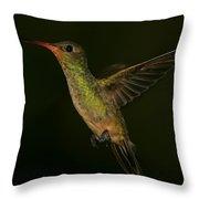 Gilded Hummingbird In Flight Throw Pillow