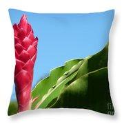 Ginger Flower Throw Pillow