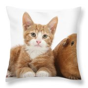 Ginger Kitten With Red Guinea Pig Throw Pillow