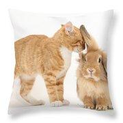 Ginger Kitten With Sandy Lionhead Rabbit Throw Pillow