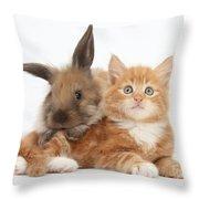 Ginger Kitten Young Lionhead-lop Rabbit Throw Pillow