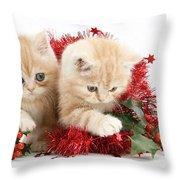 Ginger Kittens Throw Pillow