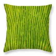 Ginko Tree Leaf Throw Pillow