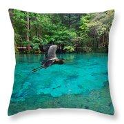 Ginnie Springs Throw Pillow