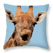 Giraffe Calling Throw Pillow
