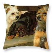 Give A Poor Dog A Bone Throw Pillow