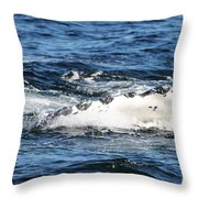 Giving Some Fin Throw Pillow