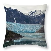Glacial Bay And Ice Throw Pillow by Mike Reid