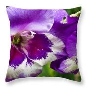 Gladiola Blossom 2 Throw Pillow