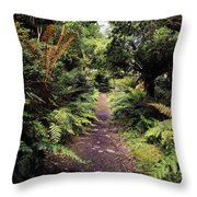 Glanleam, Co Kerry, Ireland Path In The Throw Pillow