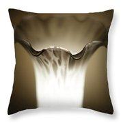 Glass And Light Throw Pillow