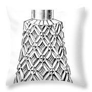 Glass Bottle, 1895 Throw Pillow