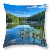 Glassy Waters Throw Pillow