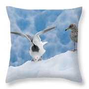 Glaucous-winged Gull Larus Glaucescens Throw Pillow