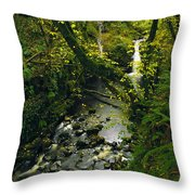 Glenariff, Co Antrim, Ireland Waterfall Throw Pillow