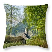 Glendalaugh 1 Throw Pillow
