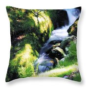 Glendalough, Co Wicklow, Ireland Throw Pillow