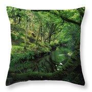 Glengarriff River, County Cork, Ireland Throw Pillow