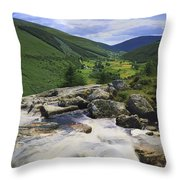 Glenmacnass, County Wicklow, Ireland Throw Pillow