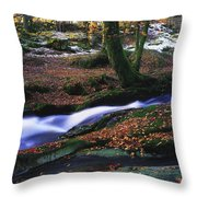 Glenmacnass Waterfall, Co Wicklow Throw Pillow