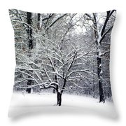 Glenna's Dogwood In The Snow Throw Pillow