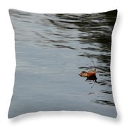 Gliding Across The Pond Throw Pillow