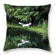 Gliding Through The Swamp Throw Pillow