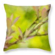 Glimpse Of Spring Throw Pillow