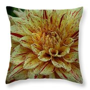 Glorious Gloriosa  Throw Pillow