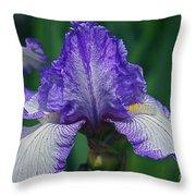 Glorious Iris Throw Pillow
