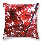 Glorious Red Throw Pillow